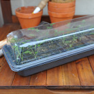 Windowsill seed and plant raising kit