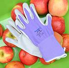 Little fingers    kids purple nitrile glove