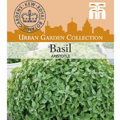 Urban Seed Collection - Basil Aristotle