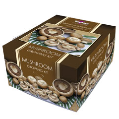 Brown Button Mushroom Kit