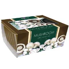 Small White Button Mushroom Kit