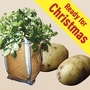 Kestrel Seed Potatoes (1kg) Plus 3 Patio Planters